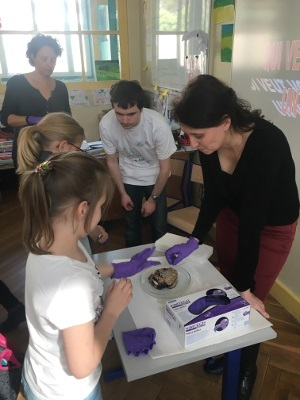 Touching brains at a school workshop organized by Auver-Brain Association in France