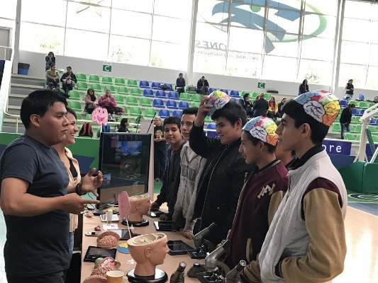 Students learn about the brain and wear brain caps during an event organized by Centro de Investigaciones Cerebrales, Universidad Veracruzana in Mexico