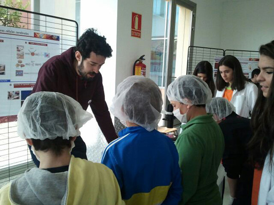 Student visits to Castilla La Mancha University in Spain