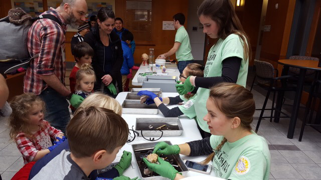 Children inspect brains at an event organized by Hope College in Holland, Michigan.
