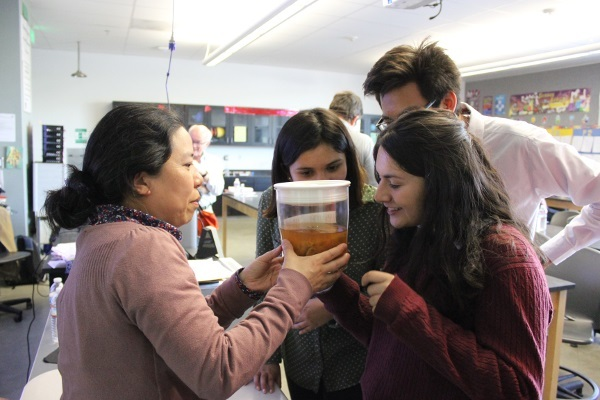 HMRI's Dr. Arakaki shows PUSD middle school students a brain in a jar during an event organized by Huntington Medical Research Institutes in California