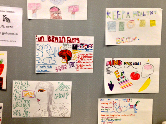 Brain posters for Brain Awareness Week at Lincoln Elementary School in New York
