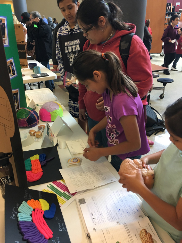 Brain activities an an event organized by Lummi Nation School in Washington.