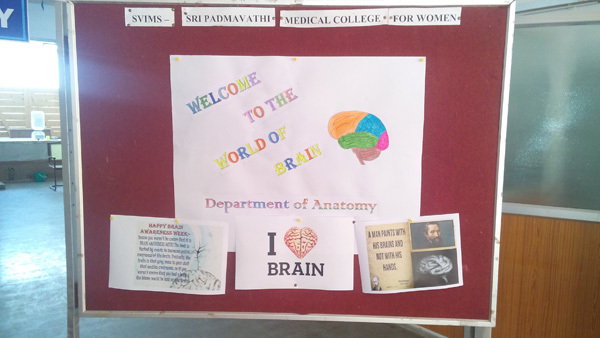 Brain Awareness Week posters from Sri Venkateswara Institute of Medical Sciences