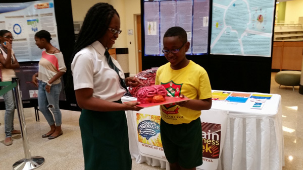 Primary and High School students check out a brain model at BAW hosted by the College of Bahamas