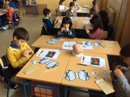 Interactive activity for students during an event organized by Universidad Pablo de Olavide in Seville, Spain