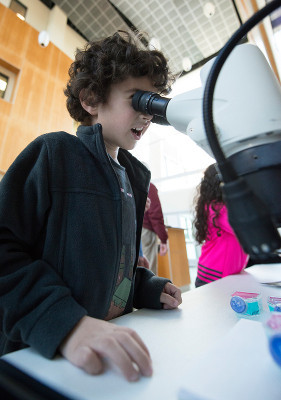 A young scientist learns about zebra fish and brain development at a exhibit set up by graduate students organized by Virginia Tech Carilion Research Institute