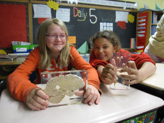 Kids having fun with the brain during Gustavus Adolphus College's classroom visit in Minnesota, USA
