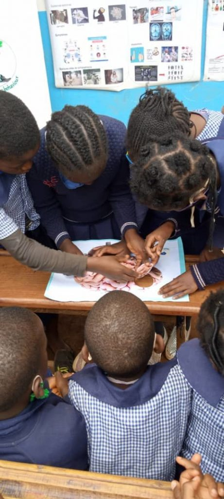 Brain puzzle in primary school organized by the Cameroon Association for Neuroscience / University of Dschang in Cameroon.